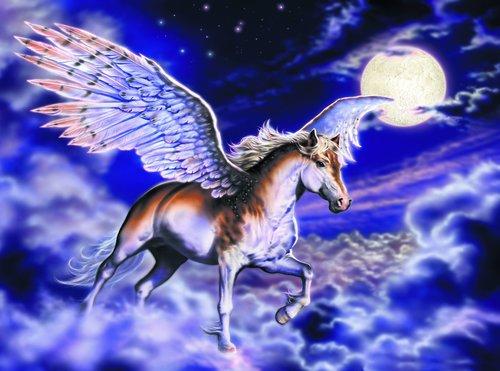 Fototapet Pegasus häst MIDAL