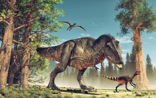 Fototapet dinosaurier MIDAL