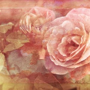 Fototapet Målad blomma MIDAL