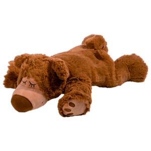 Sömnig brun björn MIDAL
